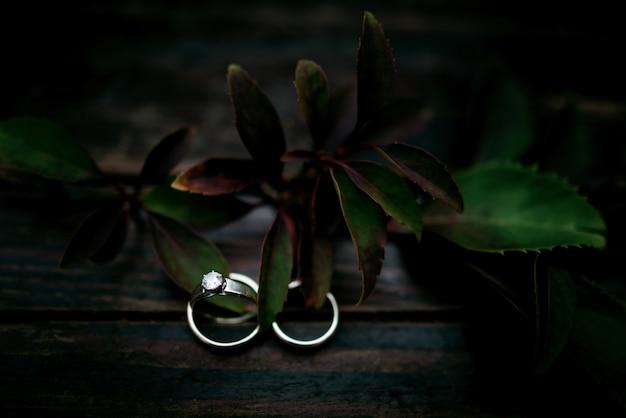 Jasne obrączki ślubne stoją pod ciemnozielonej gałęzi na drewnianym stole