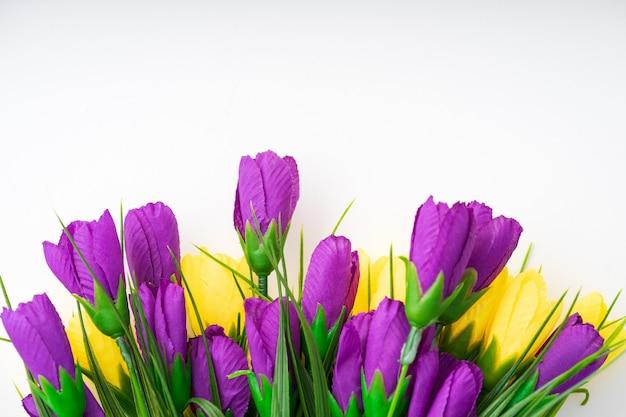 Jasne piękne kwiaty leżą na białym tle.