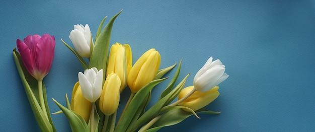 Jasne piękne soczyste tulipany na niebieskim tle