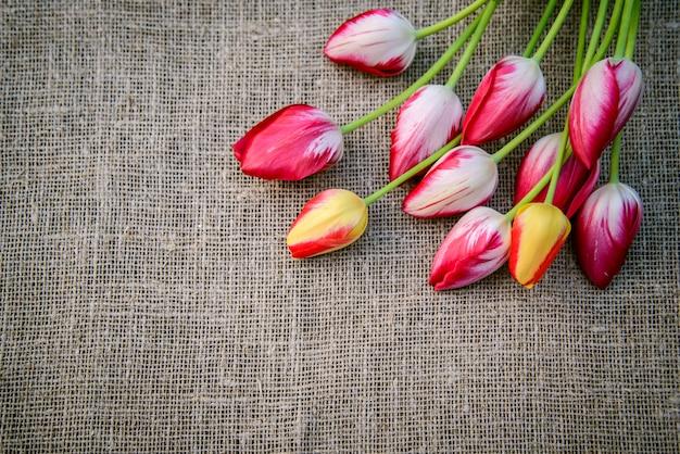 Jasne tulipany na tle płótna