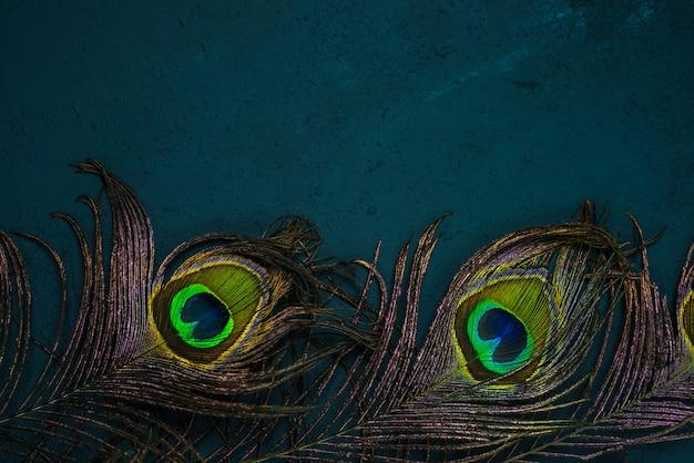 Jasne wielobarwne pawie pióra na ciemności. symbol kryszny w religii hinduizmu