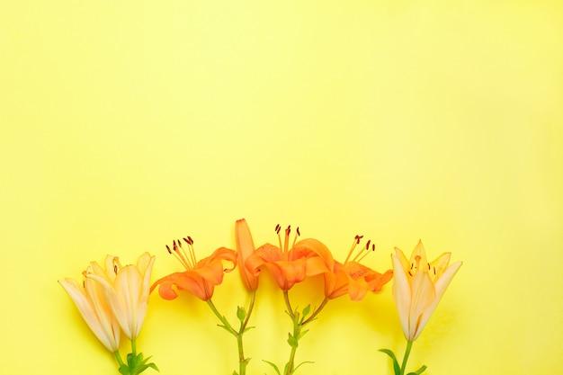 Jasne żółte i pomarańczowe kwiaty