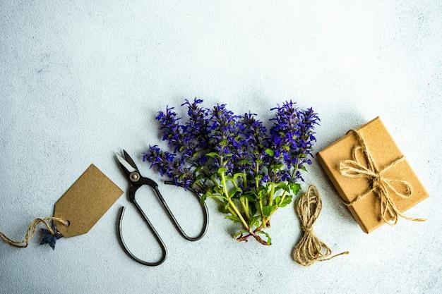 Jasnoniebieskie kwiaty szałwii lub szałwii na betonowym stole