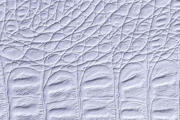 Jasnoniebieskie skórzane tekstury tła