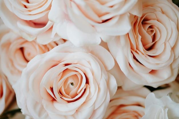 Jasnopomarańczowa róża wzór tła makro strzał