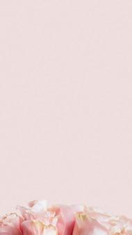 Jasnoróżowe róże na pastelowej różowej tapecie na telefon komórkowy