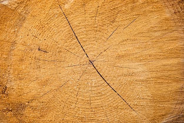 Jasnożółta pęknięta drewniana tekstura może służyć jako tło
