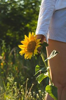 Jasnożółty słonecznik w rękach kobiety, która chce być bliżej letniej natury