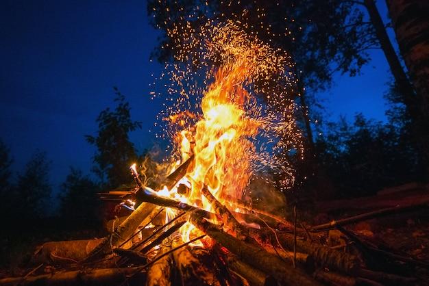 Jasny ogień w ciemną noc na leśnej polanie.