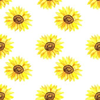 Jasny słonecznik. wzór. ręcznie rysowane akwarela ilustracja. tekstura do druku, tkaniny, tkaniny, tapety.