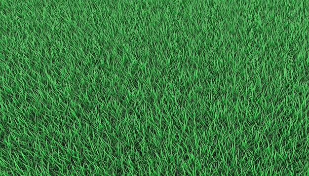 Jasny zielony trawnik. ilustracja 3d