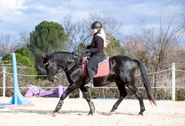Jazda konna trenuje swojego czarnego konia