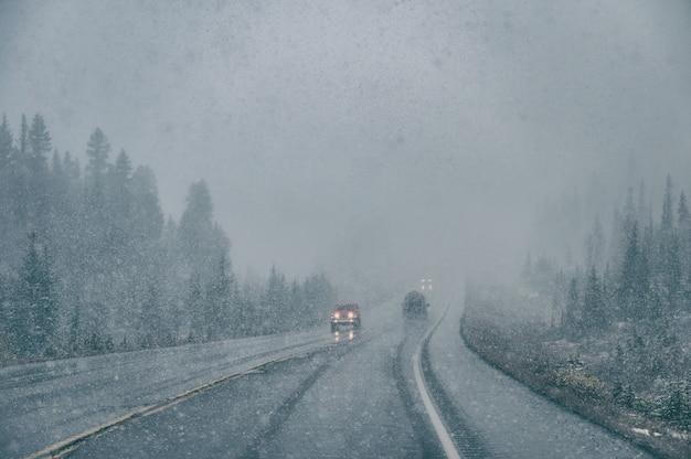 Jazda samochodem ze słabą widocznością w zamieci z dużymi opadami śniegu w parku narodowym