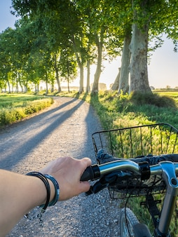 Jechać na rowerze podczas zmierzchu w drzewnej ścieżce