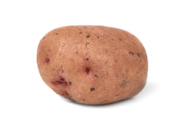 Jeden dojrzały ziemniak na białym tle na białym tle