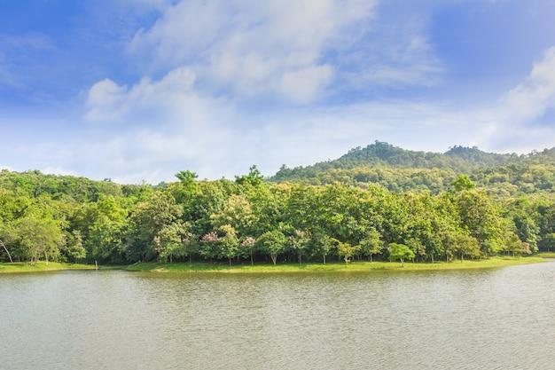 Jedkod pongkonsao natural study i ecotourism center