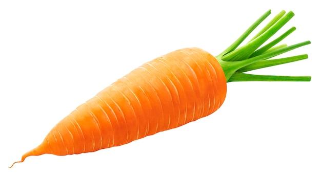 Jedna cała marchewka na białym tle