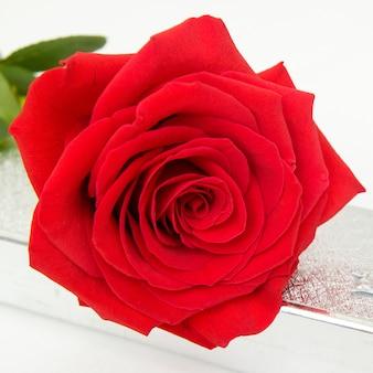 Jedna czerwona róża i pudełko na prezent z biżuterią w tle