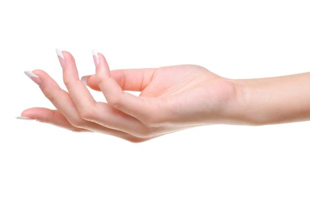 Jedna elegancka kobieca ręka z pięknem francuski manicure na białym tle