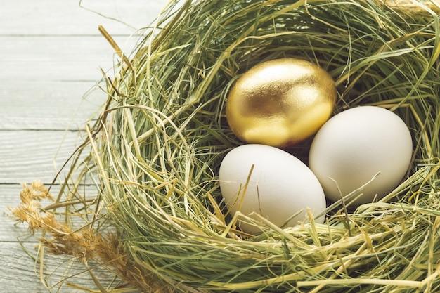 Jedno złote i dwa zwykłe jaja w gnieździe.