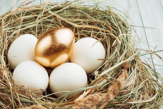 Jedno złote i wiele zwykłych jaj w gnieździe siennym.