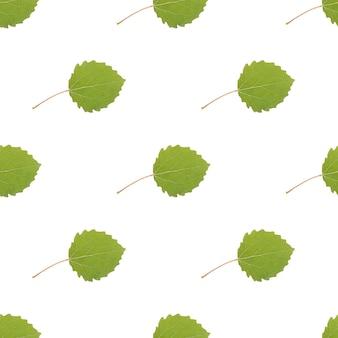 Jednolity wzór kolorowych liści na białym tle