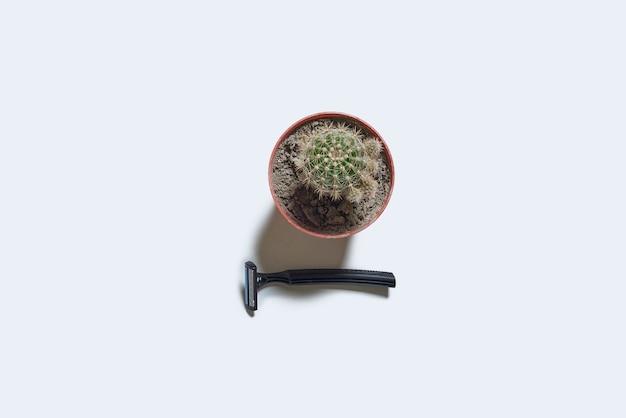 Jednorazowa jednorazowa żyletka i kolczasta roślina kaktusowa na białym tle widok z góry...