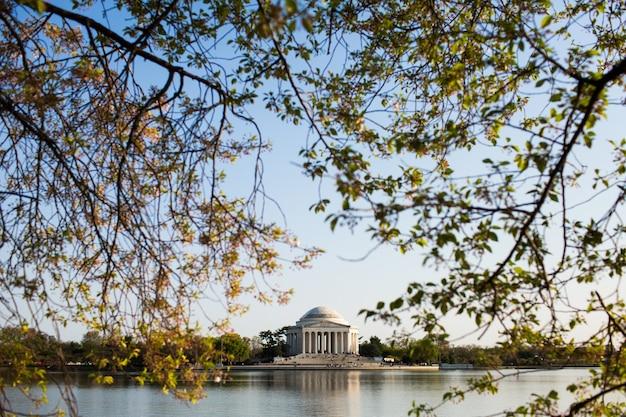 Jefferson memorial otoczony wodą i zielenią pod niebieskim niebem w waszyngtonie