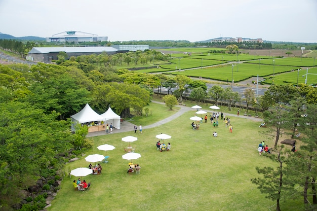 Jeju, korea - 12 października: osulloc herbata muzeum jest f