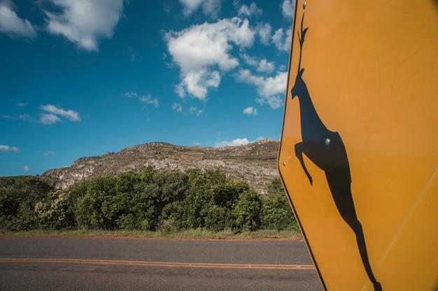 Jeleni drogowy podpisuje wewnątrz brazylijską wieś, serro, minas gerais, brazylia