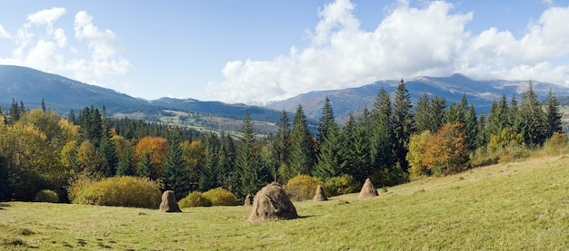 Jesień górzysta zielona łąka ze stosem siana (obrzeża wsi jasynja, region zacarpatsjka, karpaty, ukraina). zdjęcie złożone z pięciu strzałów.
