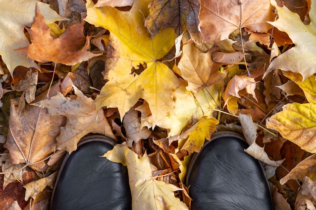 Jesień, jesień, liście, nogi i buty. buty na nogach chodzące w naturze.