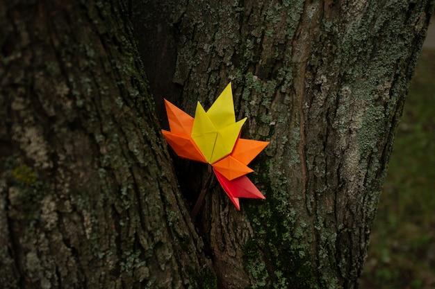 Jesień koncepcja tło tradycyjne rzemiosło papierowe origami ręcznie opadłych liści klonu natura kolorowy obraz backround idealny do użytku sezonowego