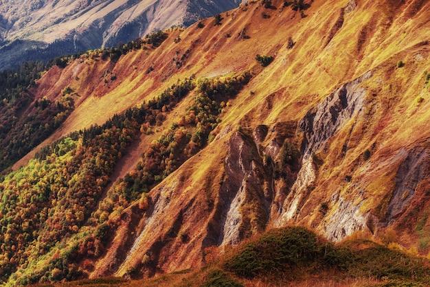 Jesień krajobraz i śnieżni szczyty w słońcu.
