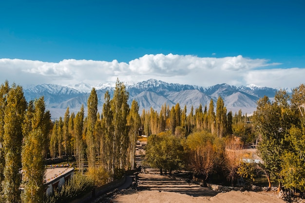 Jesień krajobraz w leh ladakh regionie, india