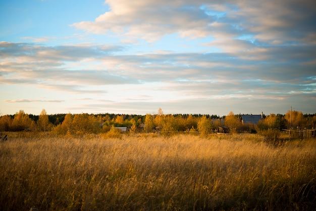 Jesień krajobraz w polu z yellowed trawą w wieczór, rosja, ural, wrzesień