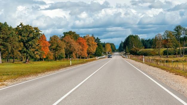 Jesień krajobraz z asfaltową drogą i lasem.