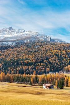 Jesień krajobraz z górami, żółtym lasem i domem, austria