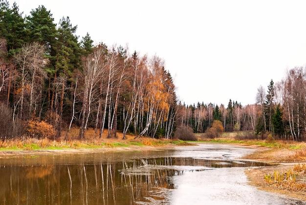 Jesień krajobraz z lasem i jeziorem
