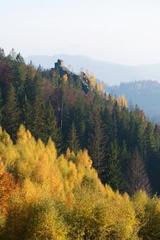 Jesień krajobraz z skałą w lesie