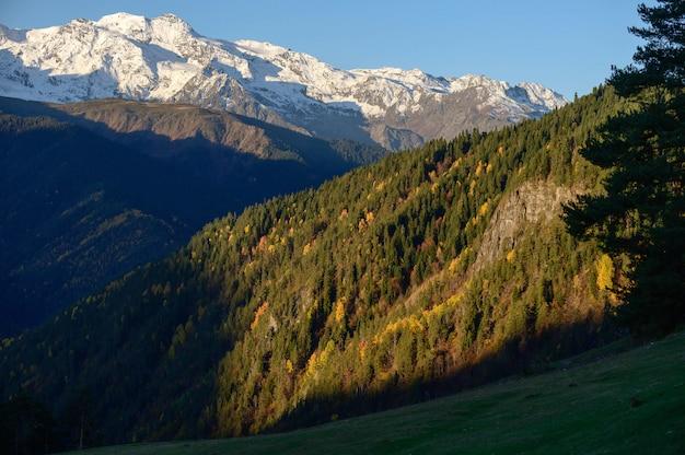 Jesień las i śnieg górski w heshkili hut savaneti, georgia.