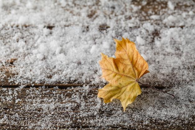 Jesień liścia klonowego lying on the beach w śniegu