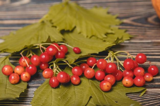 Jesień liście i jagoda nad drewnianym tłem