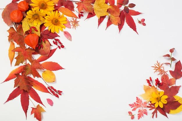 Jesień liście i kwiaty na bielu