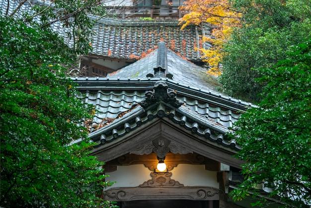 Jesień liście japoński klon (momiji) przy świątynnym tłem