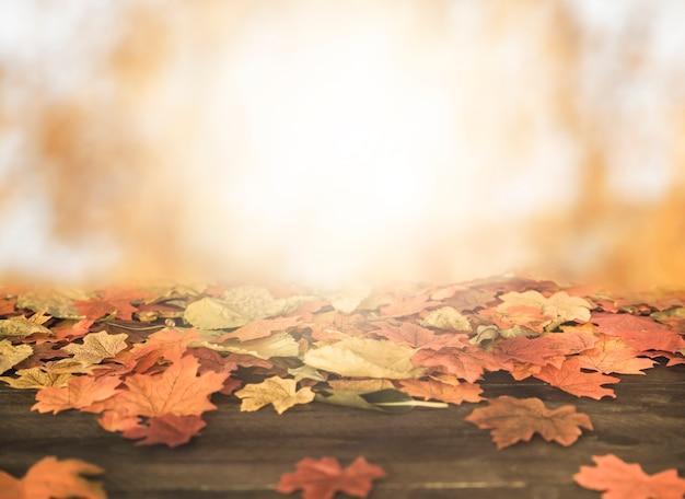 Jesień liście kłama na drewnianej ziemi
