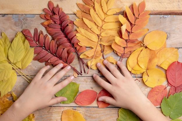 Jesień liście nad drewnianym. z copyspace