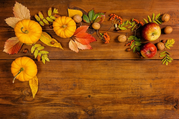 Jesień martwa natura z dyniami i żółtymi liśćmi, koncepcja dekoracji na święto dziękczynienia.