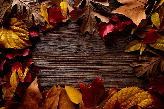 Jesień spadek ramy złoci czerwoni liście na drewnie