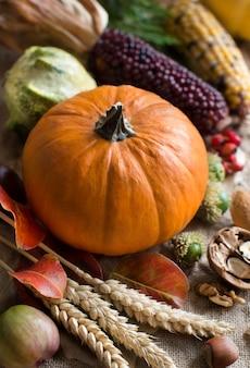 Jesień tło z dyni na drewnianym stole z bliska